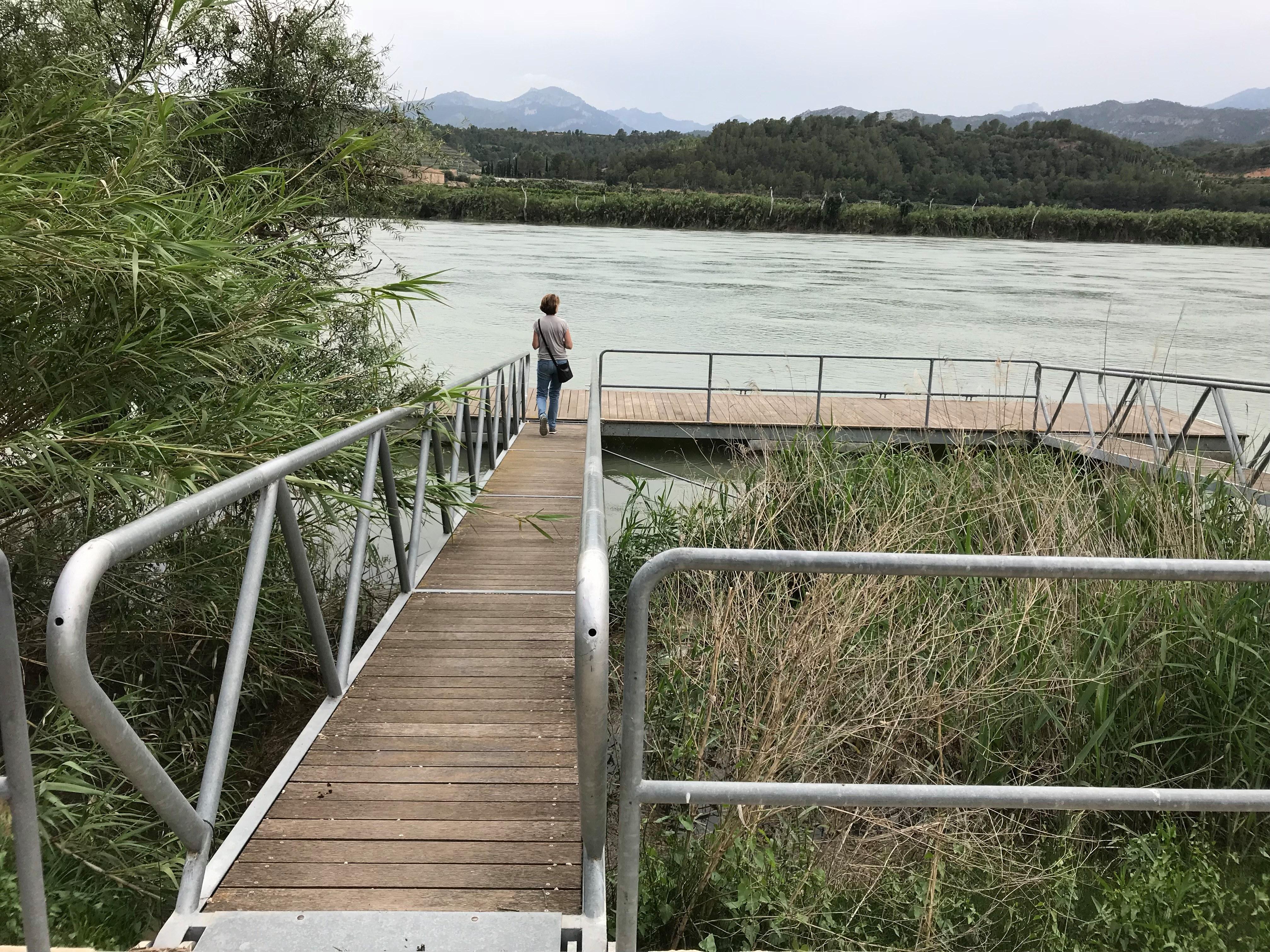 Dock-Benifallet